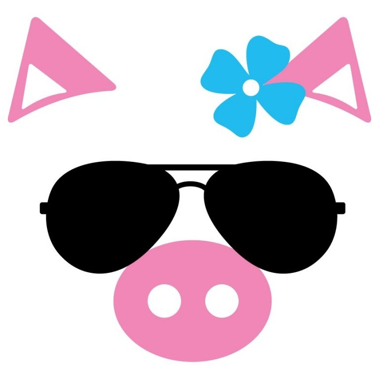 Pig with Sunglasses 426