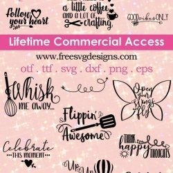 Lifetime Commercial license quotes